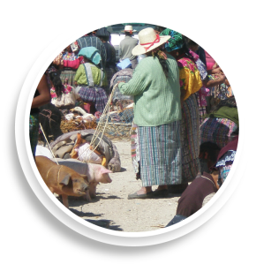 market place with women selling animals